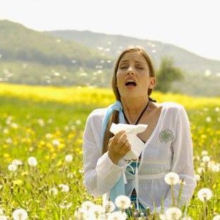 Алергія - епідемія ХХІ століття