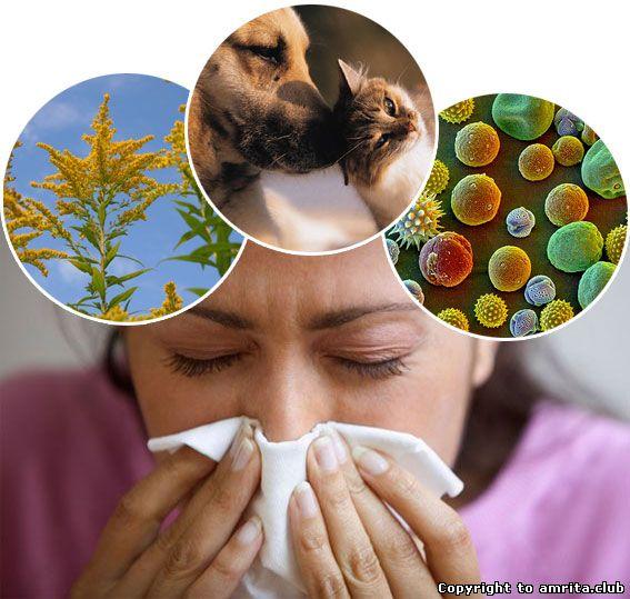 Подолайте алергію!