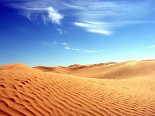 Тип: суха шкіра, Навколишнє середовище: пустеля