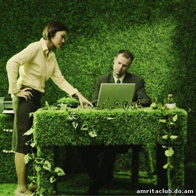 Екологічний офіс: турбота про природу та економія коштів