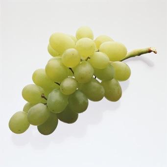 Шанталь – «виноградна» косметика з антиоксидантним захистом